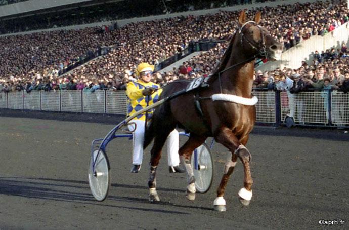 ourasi, cheval légende HoCaPa