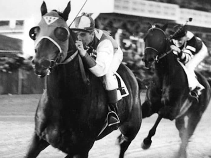 seabiscuit, cheval HoCaPa