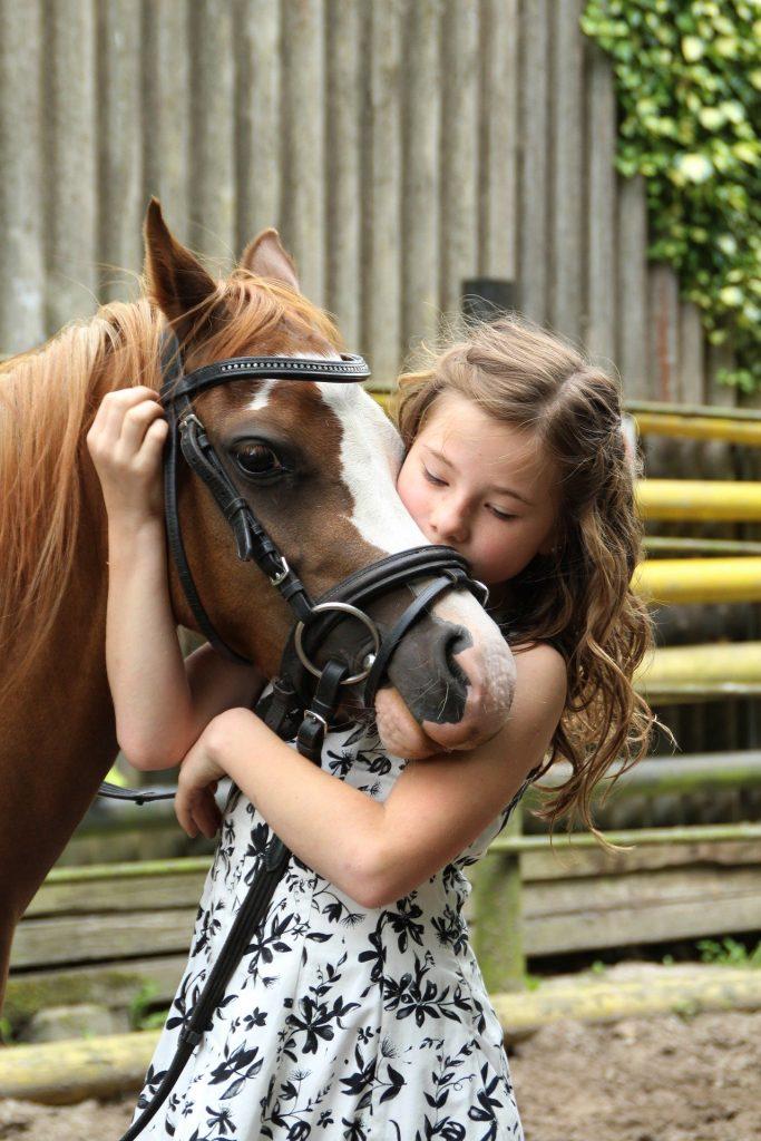 enfant, poney, HoCapa, acheter un cheval