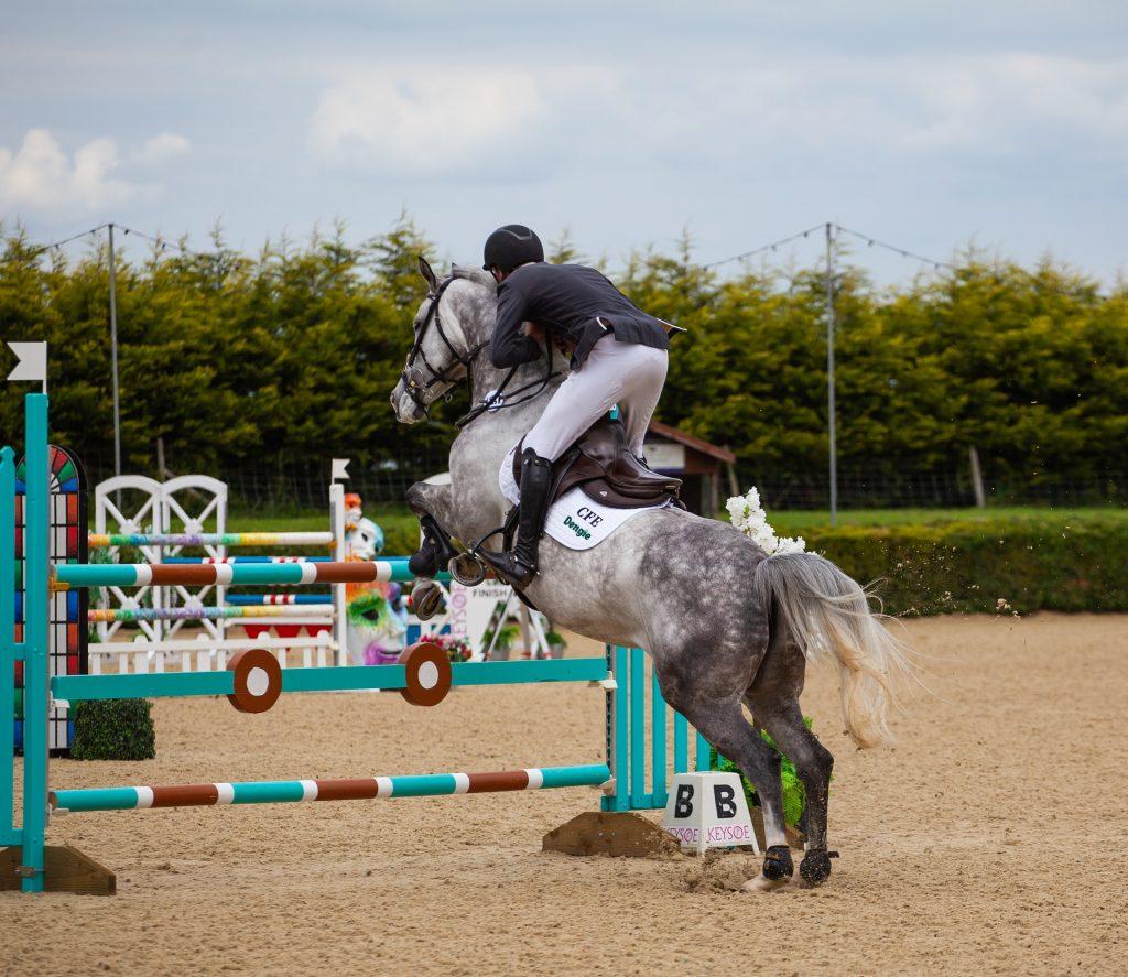 cheval gris saut - HoCaPa
